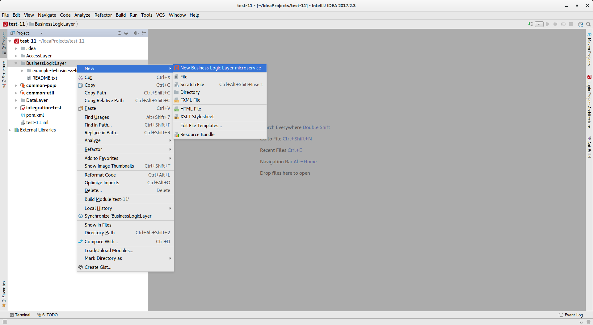 Development IntelliJ Plugin 2 0