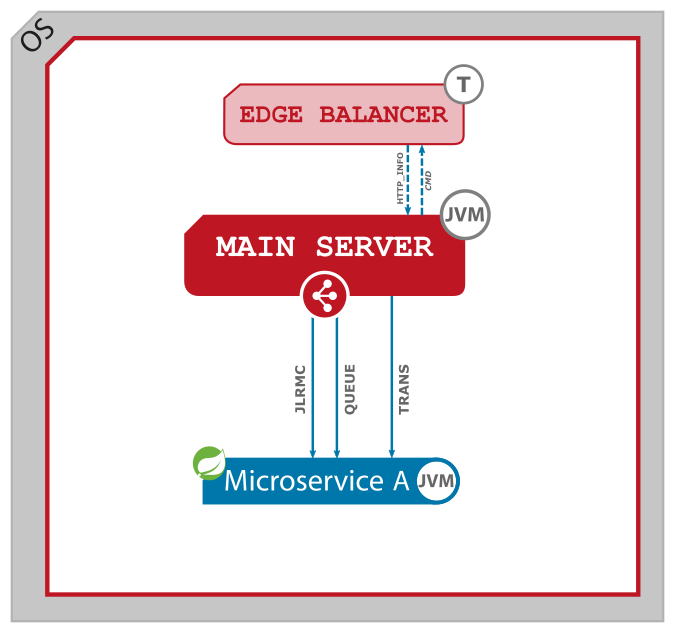 Figure 3. Native microservice and Main Server.