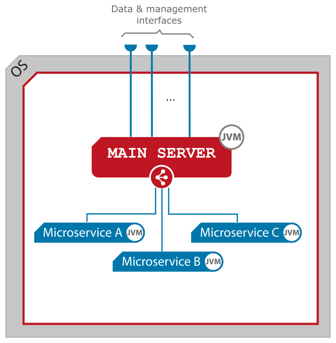 Figure 2. JLupin Main Server with microservices and interfaces.