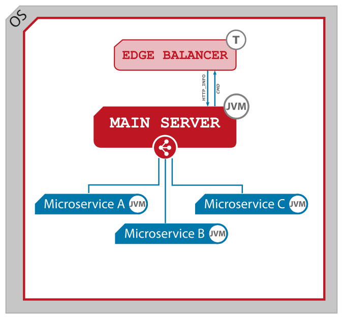 Figure 1. Microservices as separated processes.